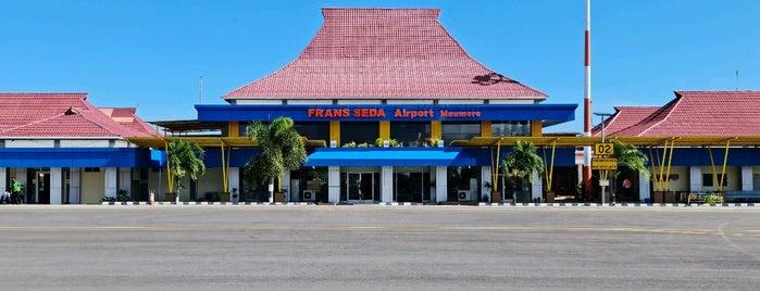 Bandara Fransiskus Xaverius Seda is one of Airport ( Worldwide ).