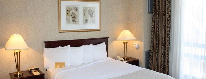 Holiday Inn Hotel & Suites is one of Top 10 Hotels in Ottawa (ranked by guests).