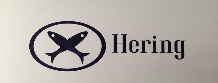 Hering Uruguay - Oficina Central is one of Celso'nun Beğendiği Mekanlar.