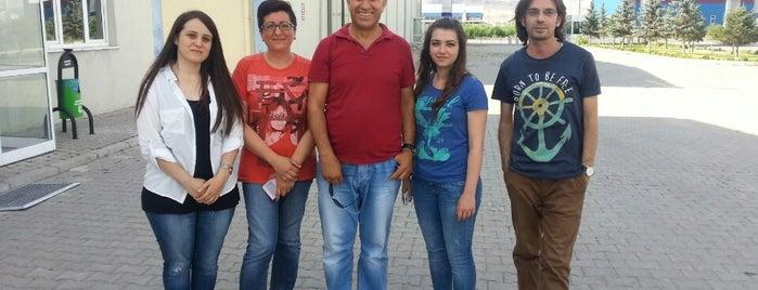 şirikçioğlu mensucat san.ve tic.a.ş is one of Posti che sono piaciuti a Selahattin.