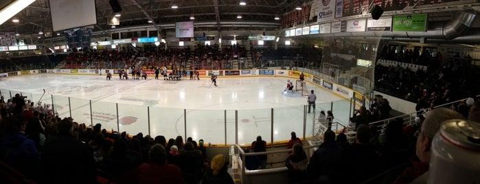 Gatorade Garden City Complex is one of OHL Arenas.