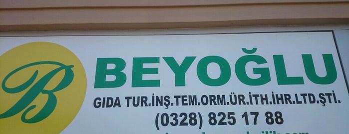 Beyoglu Et Lokantası is one of Tuğrulさんのお気に入りスポット.