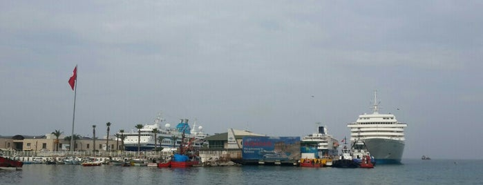 Celebrity Reflection Cruise is one of Posti che sono piaciuti a Bileydi.