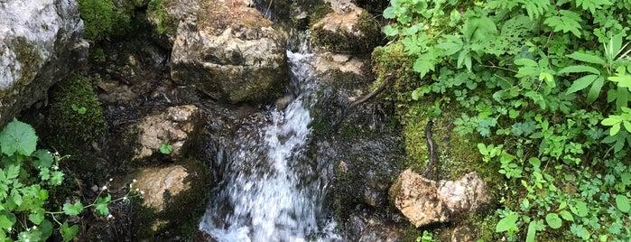 Hinterer Gosausee is one of das schwimmwasser.