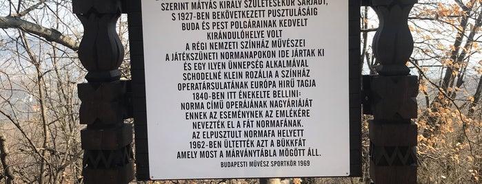 Normafa futó útvonalak is one of Budai hegység/Pilis.