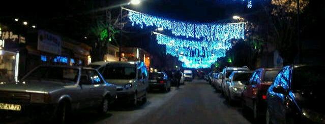 Ragıp Tüzün Caddesi is one of CADDE-SOKAK.