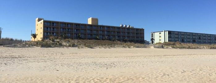 54th Street Beach is one of Orte, die Afi gefallen.