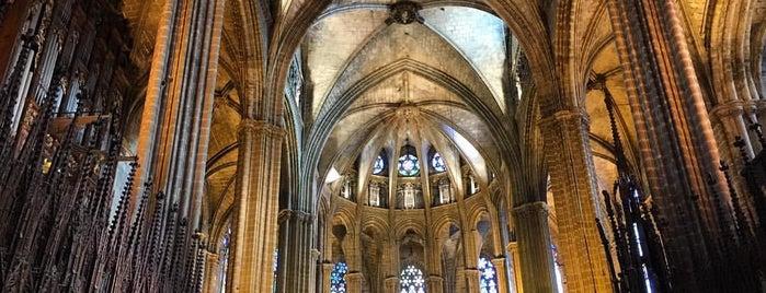Claustre de la Catedral de Barcelona is one of Barcelona.