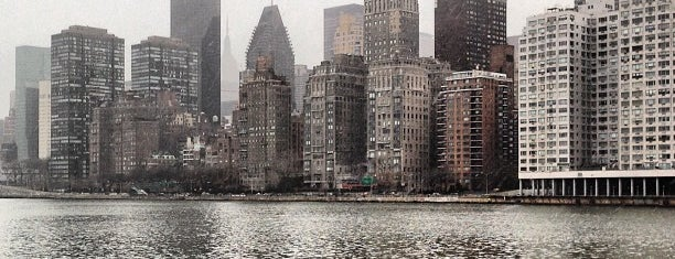 Roosevelt Island is one of NY`ta görülecekler.
