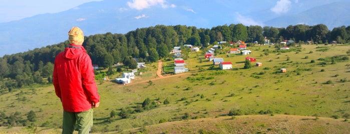 Davlumbaz Yaylası is one of Doğa.