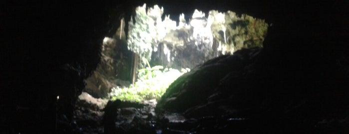 Grutas de Calcehtok is one of Tempat yang Disukai Jesús Ernesto.