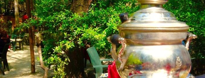 Papazın Bağı is one of Baharın tadına demli bir çayla varın.
