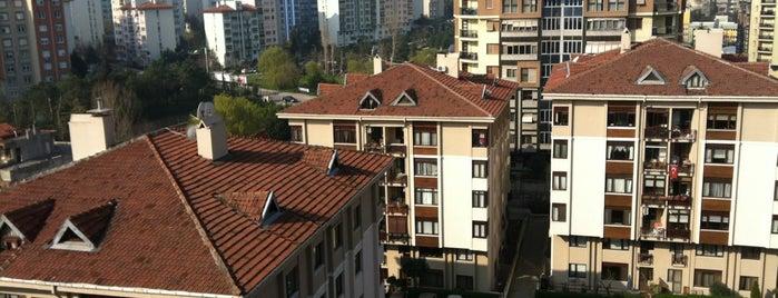 Guzel Evim(Sinpas  Koru Sitesi) is one of Orte, die Engin gefallen.