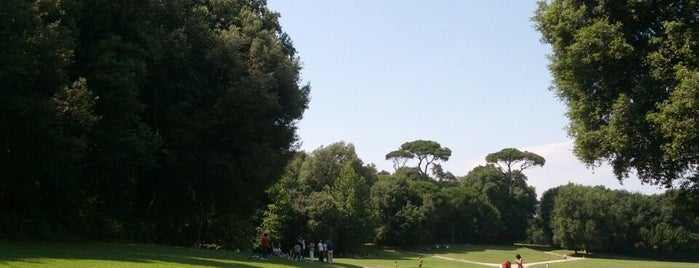 Parco di Capodimonte is one of Napoli.