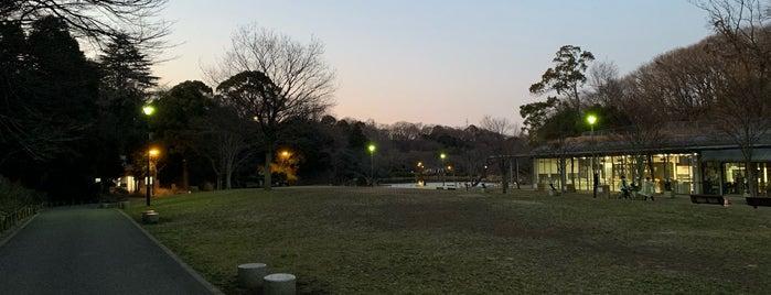 県立三ツ池公園パークセンター is one of Lugares favoritos de atsushi69.