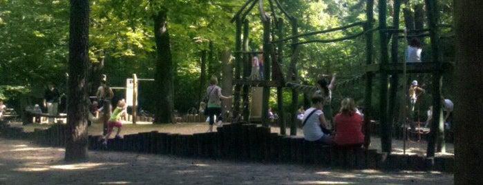 Blasewitzer Waldpark is one of Dresden.