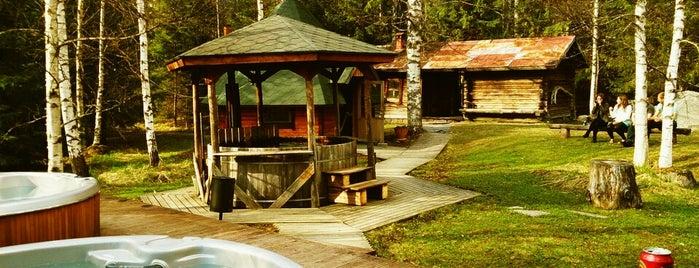 Juhlatalo Majakoski is one of Tempat yang Disukai Paty.