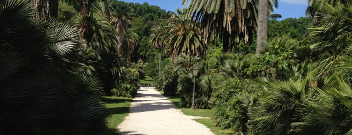 Orto Botanico is one of Rome 2013.