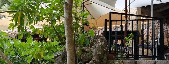 Restaurant Es Guix is one of Locais curtidos por Lisa.