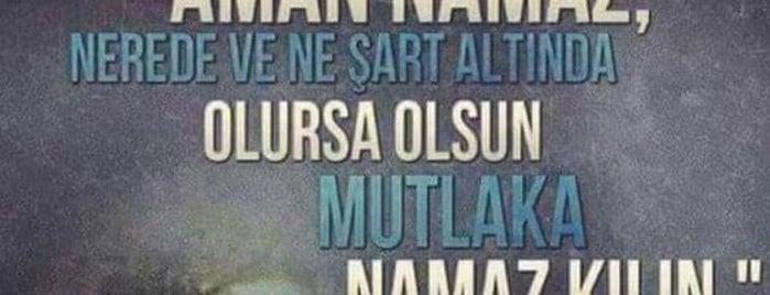 Zekeriya Bey Camii is one of Enes 님이 좋아한 장소.