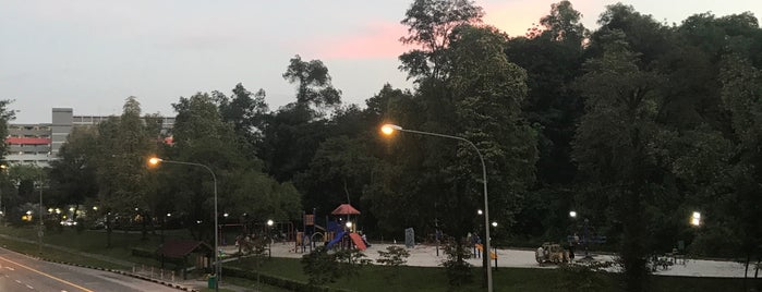 Playground Next To Ang Mo Kio Park is one of SG kids places.