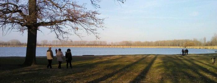 Vadkerti tó is one of Tiborさんのお気に入りスポット.