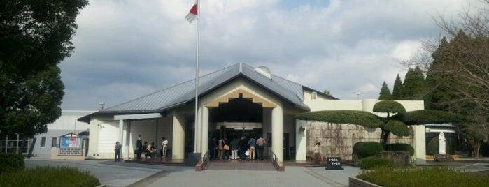 Chiran Peace Museum is one of Orte, die Tamaki gefallen.