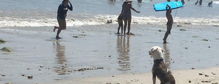Playa Punta Mita is one of Sergio M. 🇲🇽🇧🇷🇱🇷 님이 좋아한 장소.