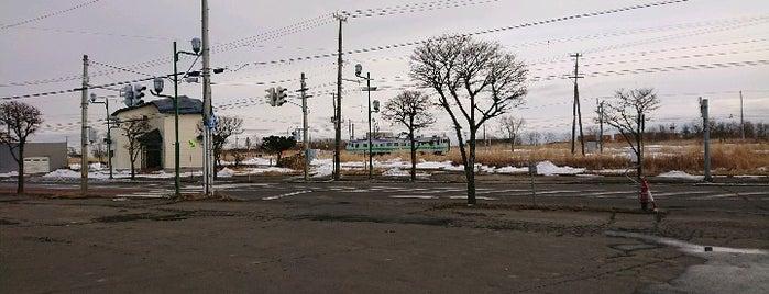 Seicomart is one of สถานที่ที่ 高井 ถูกใจ.