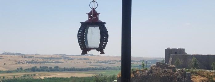 Müze Cafe is one of Diyarbakır.