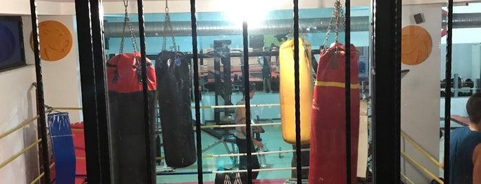 Şenol Yılmaz Boxing Academy is one of Lieux qui ont plu à Ibrahim.