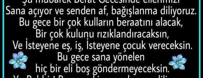 Nazım Gökçek Külliyesi is one of Murat : понравившиеся места.