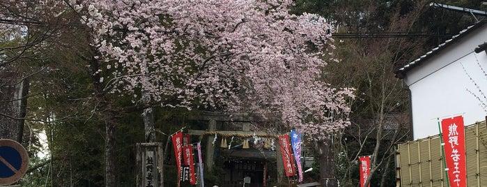 熊野若王子神社 is one of Tempat yang Disukai Mike.