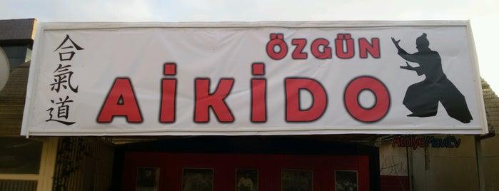 Özgün Aikido is one of Lugares favoritos de Menevse.