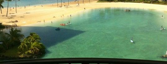 Hilton Grand Vacations at Hilton Hawaiian Village is one of Lugares guardados de Maori.