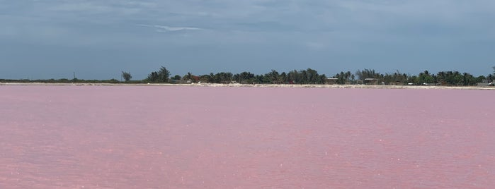 Las Coloradas, Yuctatan. is one of Merida.