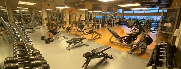 D-GYM Fitness is one of Orte, die Efe gefallen.