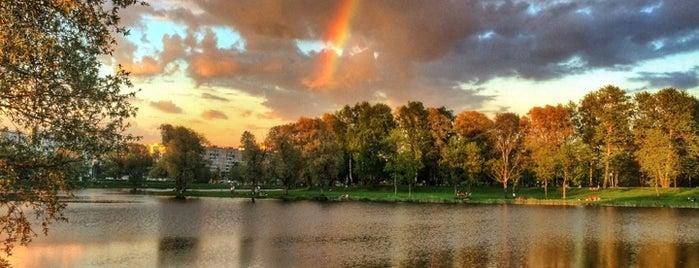 Муринский парк is one of Лена 님이 좋아한 장소.