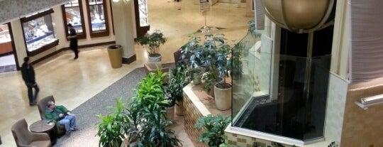 White Flint Mall is one of DanDanさんのお気に入りスポット.
