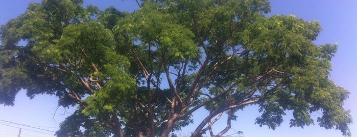 Parque das Laranjeiras is one of Posti che sono piaciuti a Sergio M. 🇲🇽🇧🇷🇱🇷.