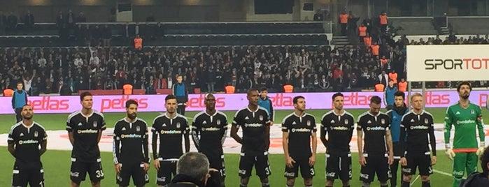 Başakşehir Fatih Terim Stadyumu is one of สถานที่ที่ Op Dr ถูกใจ.