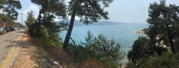 Çınar Plajı is one of Tempat yang Disukai Op Dr.