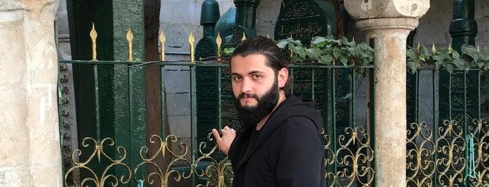Dede Osman Avni Hazretleri is one of Urfa to Do List.
