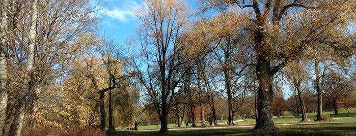 Englischer Garten is one of Posti che sono piaciuti a Özge.