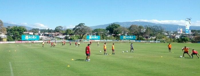 Proyecto Goal is one of Tempat yang Disimpan Mark.