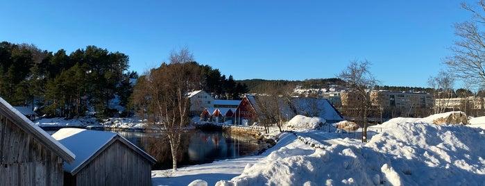 Sunnmøre museum is one of Alesund.