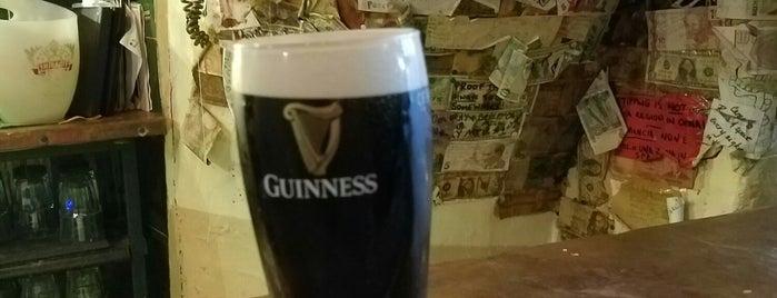 The Druid's Den Pub is one of Posti che sono piaciuti a Mathew.