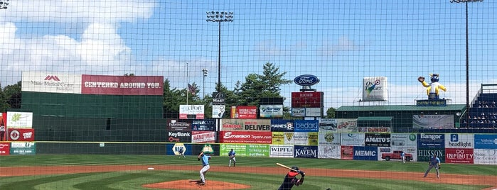 Portland Sea Dogs is one of Southern Maine Favorites.