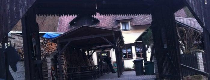 Restaurace a penzion Pod Dračí skálou is one of Posti che sono piaciuti a Денис.