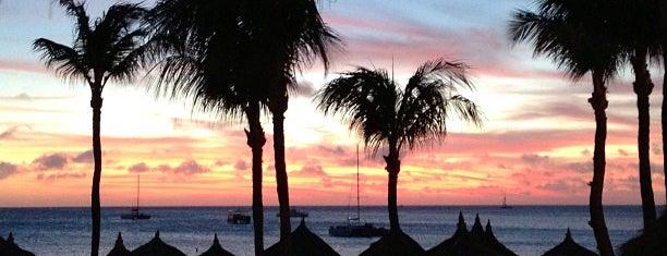 Aruba Marriott Resort & Stellaris Casino is one of My Favorites.